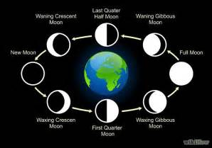 Phases of the moon occur because of following reasons