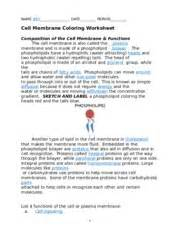 cell membrane coloring worksheet answer key cell membrane and tonicity worksheet virallyapp