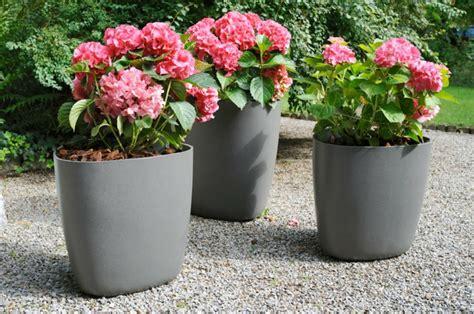 topfpflanzen garten k 252 belpflanzen bringen stimmung und stil mit