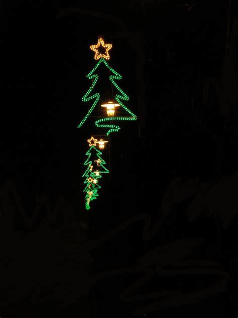 neon xmas tree free tree neon stock photo freeimages