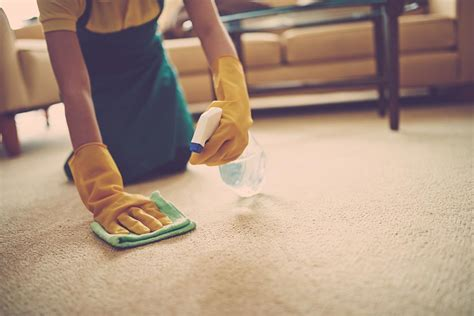 rug cleaning at home simple ways to remove carpet stains at home best 1