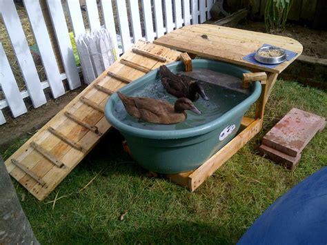 backyard duck house diy duck pool deck petdiys com