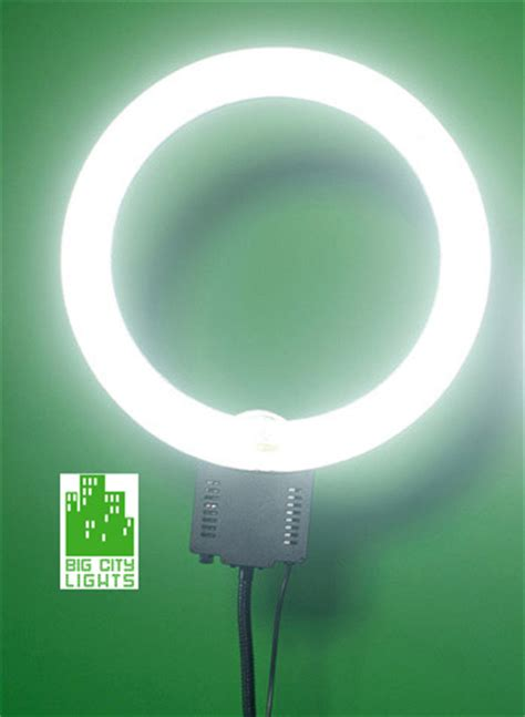 big bulb white lights ring light bulb replacement 100 images 2x 120w h8
