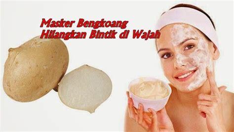 Masker Wajah Organik Sari Bengkoang budidaya tanaman mei 2017
