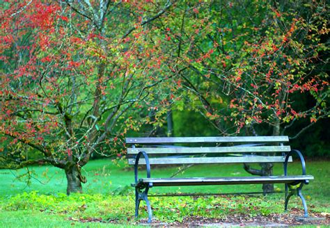 park bench by amixer on deviantart