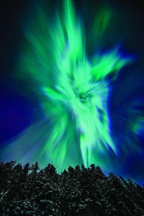 when do the northern lights happen 17 best images about nights in lights on