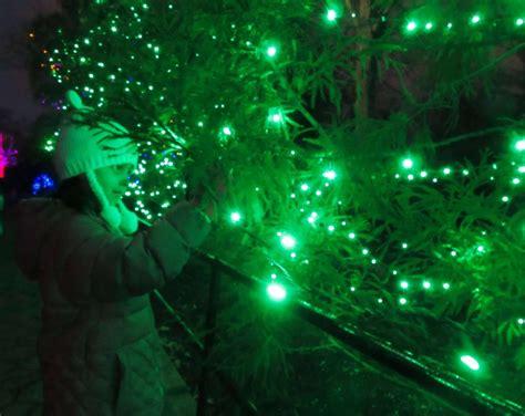 washington zoo lights zoolights a washington d c tradition as