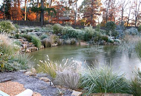 large backyard pond a natural pond in your garden