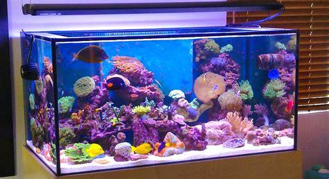 Cermin Aquarium daftar harga kaca juli 2018 semua jenis dan ukuran dekor