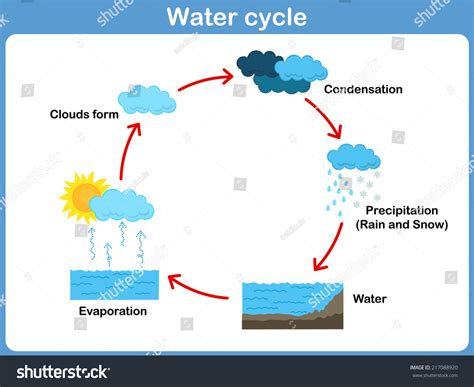 vector cycle water stock vector 217088920