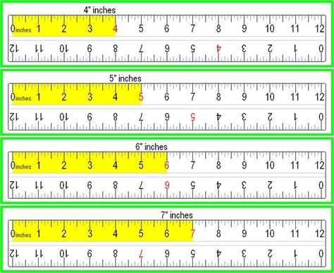 Printable Ruler Half Inch | free printable basic half and quarter inch ruler