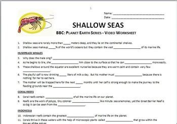 Planet Earth Shallow Seas Worksheet by Planet Earth Shallow Seas Questions Worksheet