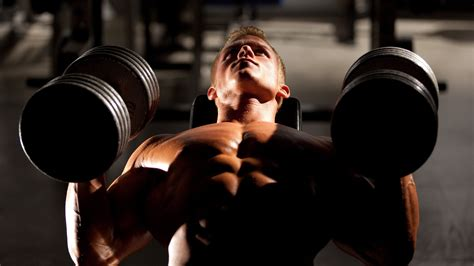 York Weight Bench Gym Wallpapers Images Photos Pictures Backgrounds