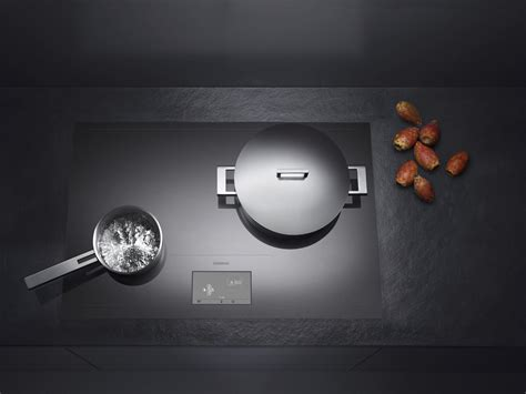 Fisher Cooktop Kenig Gaggenau Cooktop Cx480
