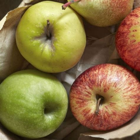 food for upset stomach 6 foods that will cure an upset stomach housekeeping