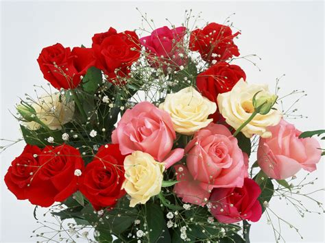 best flower romantic flowers romantic flowers