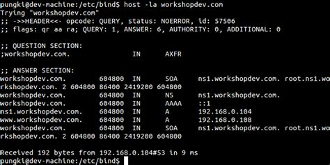 Linux Dns Lookup Best All Options For Dns Lookup Using Linux Host Command