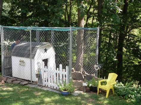 dog house chicken coop dog house chicken coop