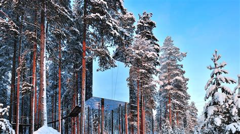 the treehotel in sweden for nature lovers 171 twistedsifter the treehotel in sweden lets you sleep in the most amazing