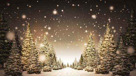 christmas trees in snow hd wallpaper 187 fullhdwpp full hd