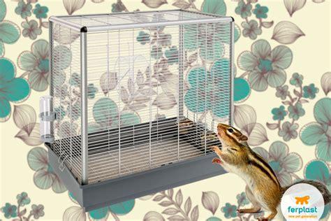 gabbia per scoiattoli giapponesi piccoli roditori domestici quale scegliere ferplast