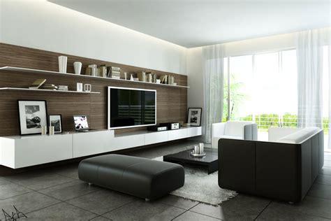 fancy modern style living room  black  white