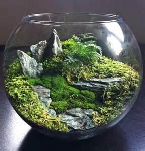 best 10 terrarium ideas on pinterest diy terrarium
