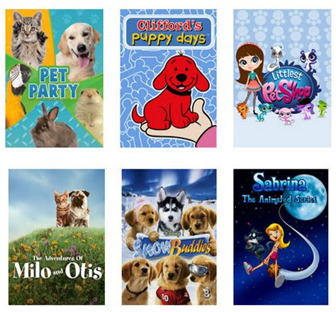 samoyed tales trilogy celebrating lessons with our dogs books 20 animal for on netflix