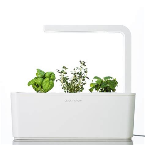 click and grow smart herb garden w l 3 refills basil smart herb garden