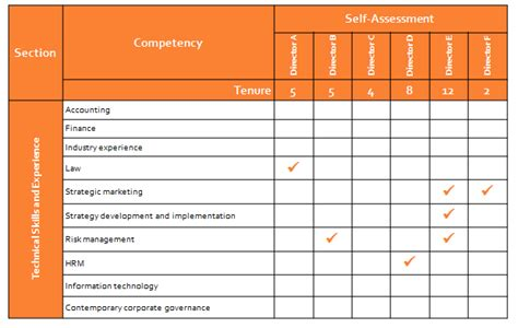 Director Skills Competency Assessment Effective Governance Skills Assessment Matrix Template