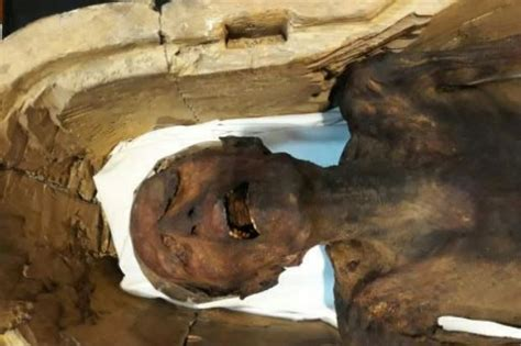 egyptian museum s displays cairo weepingredorger screaming mummy displayed in egypt museum world the star online
