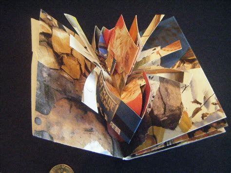 3d picture books the book project pioneering work in developing