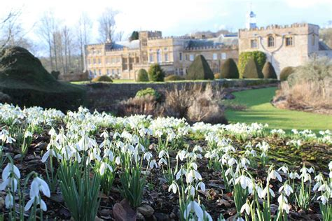 Snowdrop Weekends In February Forde Abbey Somerset Gardens White Rock