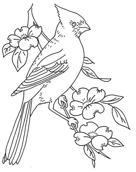 bird design coloring page free pattern cardinal and dogwood painting pinterest