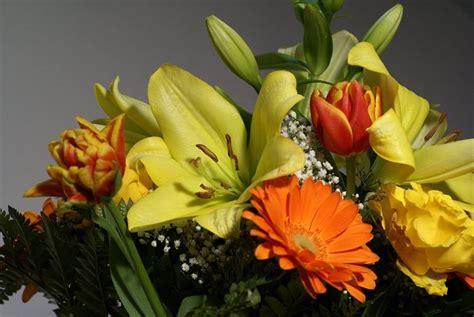 regalare fiori regalare fiori regalare fiori