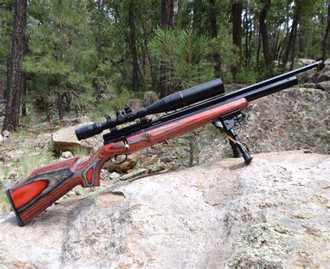 best air rifles pellet guns for term survival