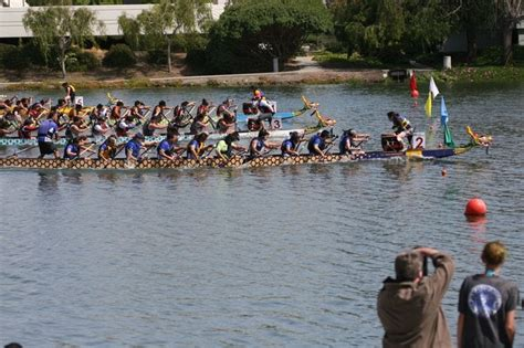 dragon boat bay area bay area dragons dragonboat racing check availability