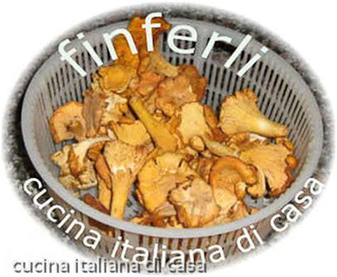 funghi finferli come cucinarli conoscere i funghi finferli descrizione e scheda di cucina