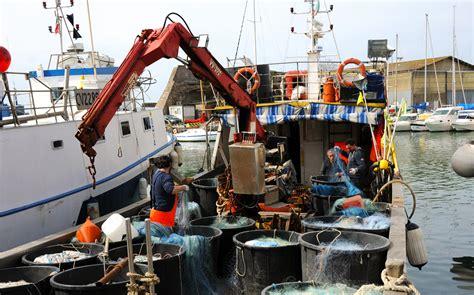 lavoro porto civitavecchia la darsena romana al porto di civitavecchia port