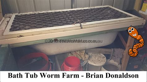 bathtub worm farm how to build a worm farm worms for worm farms fishing