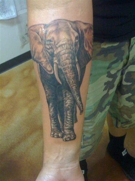 elephant forearm tattoo i like this realistic elephant not on my