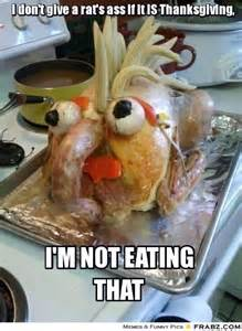 thanksgiving cat meme thanksgiving memes