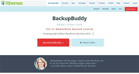 theme generator plugin backupbuddy wordpress plugin download review 2018