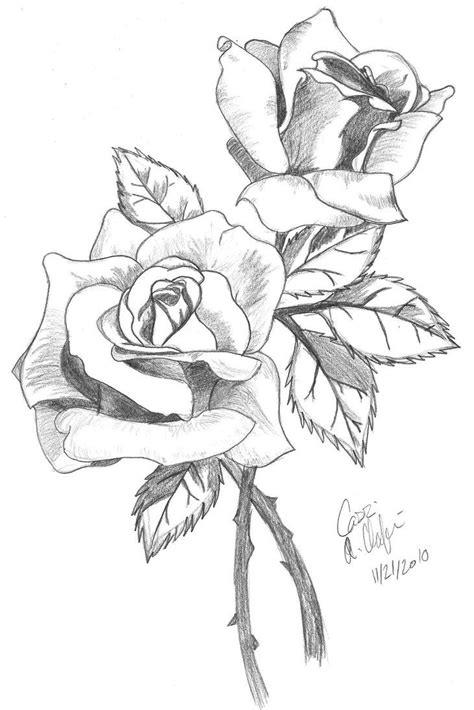 drawing tattoo roses drawings in pencil drawing in colored pencil