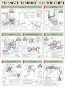 What Angle For Incline Bench Press Choosing Your Chest Workout Routine