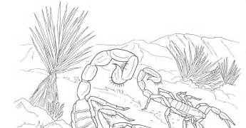 8 best images of desert coloring pages printable desert