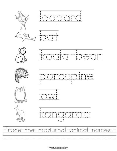 preschool workbooks word tracing animal alphabet word tracing workbook books trace the nocturnal animal names worksheet twisty noodle
