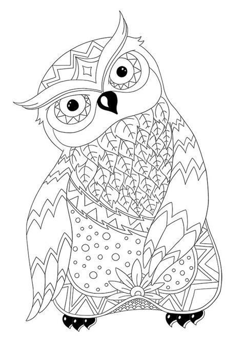 stress pattern là gì 1089 best birds to colour images on pinterest coloring