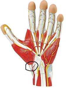 schmerzen in der handfläche gelenk schmerzen medizinisches forum