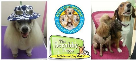 scrubby puppy naturally healthy pet food care products pest prevention grooming
